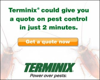 family expense audit: termite bond